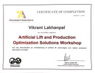 Artificial Lift and Production Optimization Workshop.